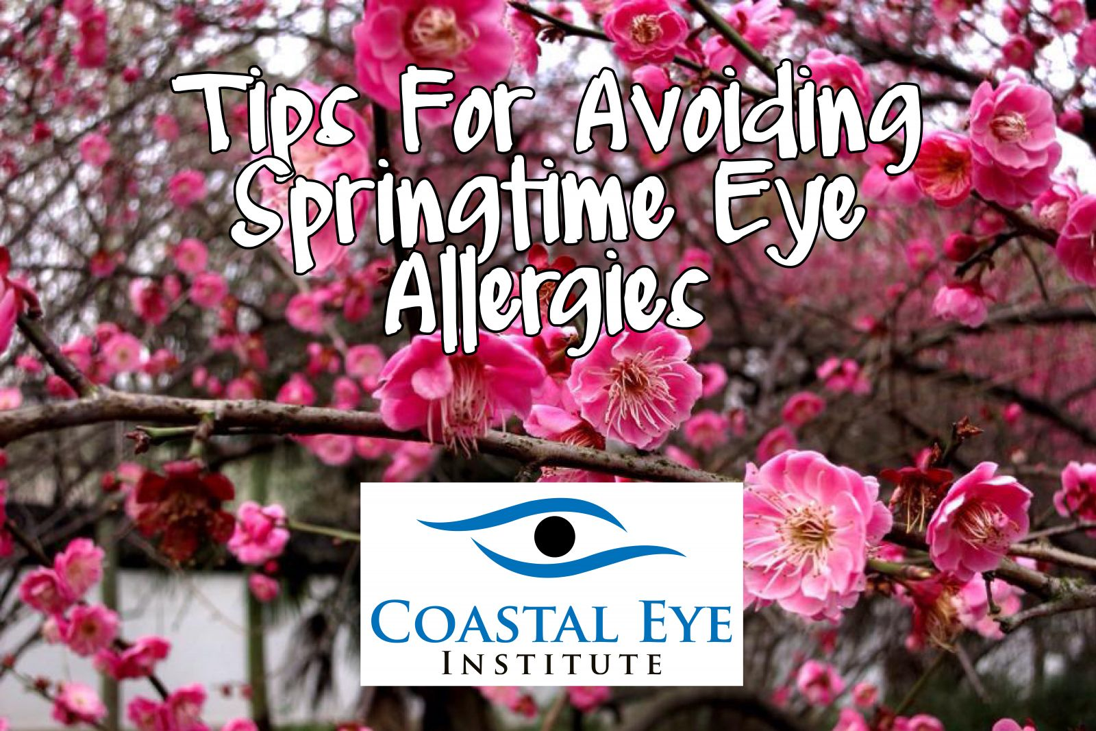 Tips for avoiding springtime eye allergies image